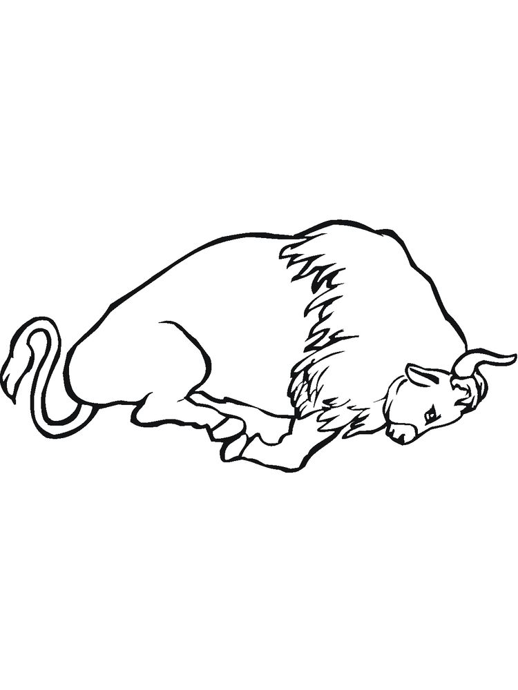 free coloring pages of buffalo