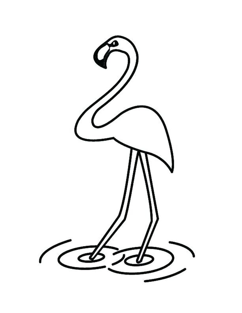 free coloring pages of flamingos