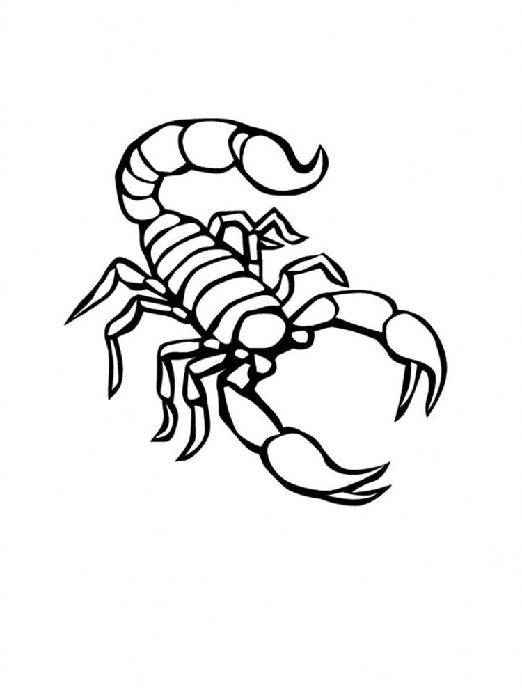 free scorpion coloring pages print