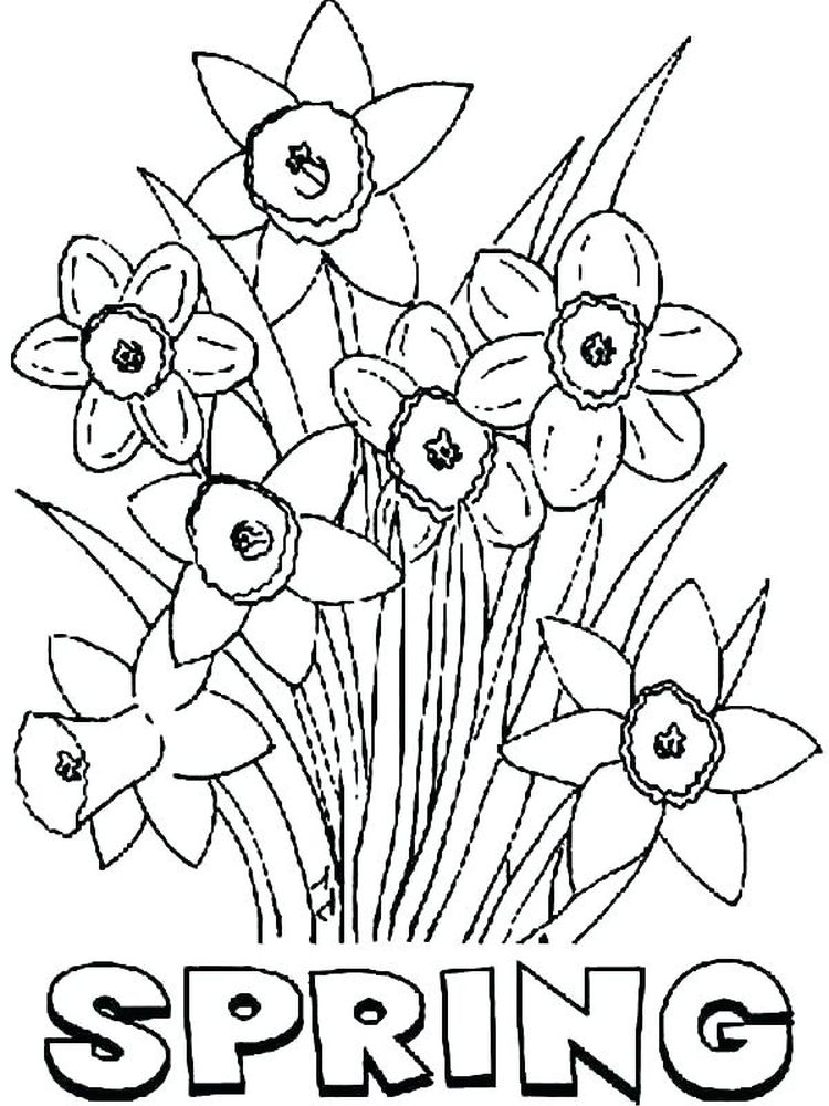 free spring flower coloring pages