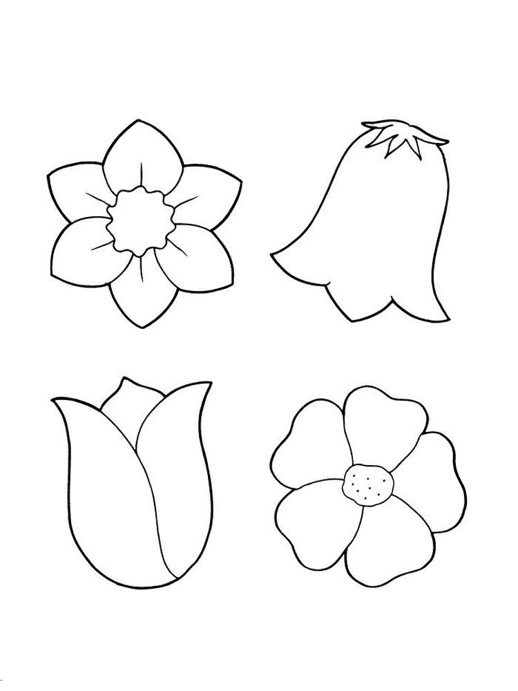 free spring flower colouring pages