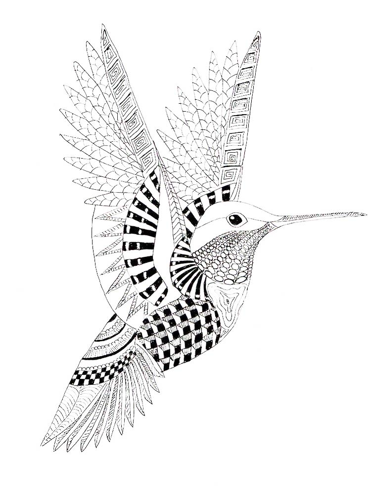 hummingbird coloring pages to print print