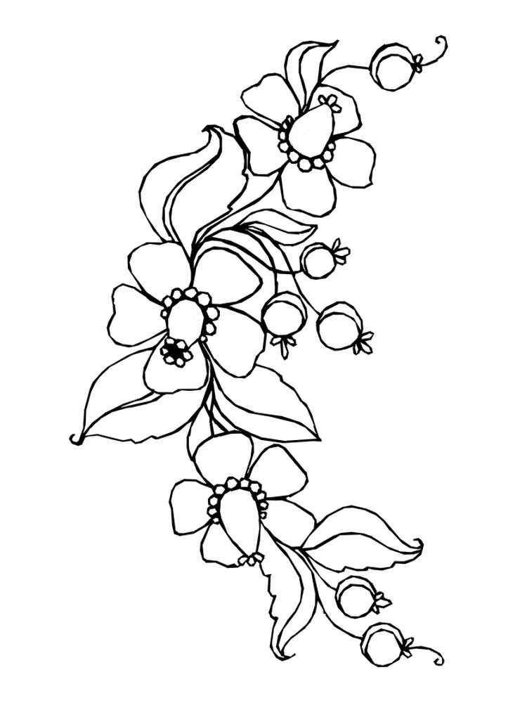 images of spring flowers coloring pages