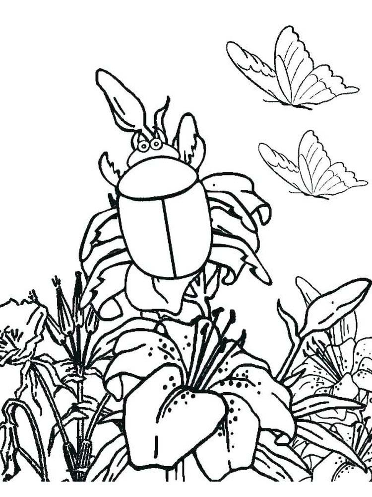 insects coloring pages print