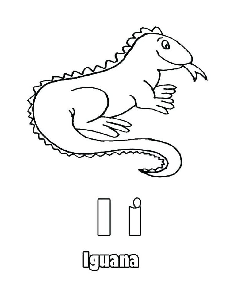 printable Iguana coloring pages print