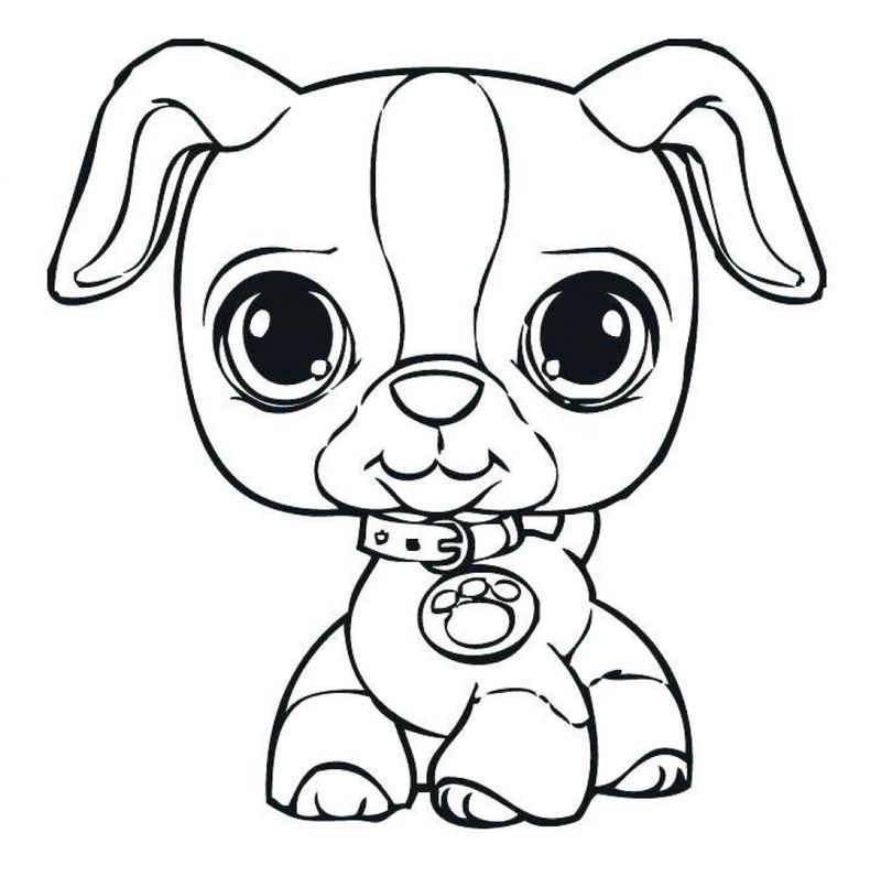 printable pictures of puppies wonder pets