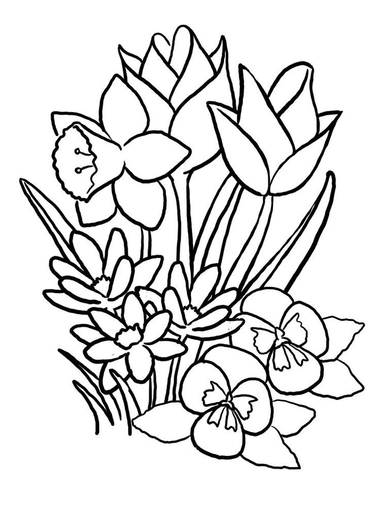 spring flowers coloring pages momjunction