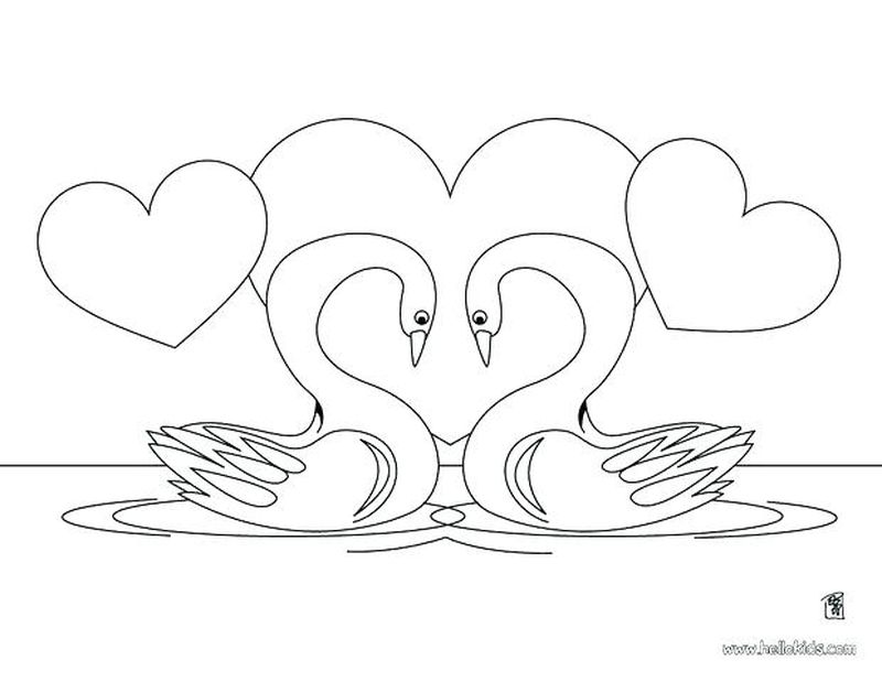 swan coloring pages print