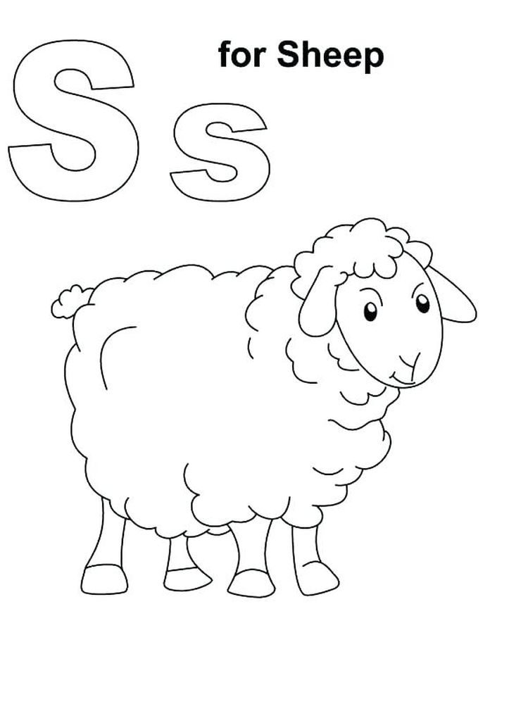 Download Free Printable Coloring Pages Of Sheep