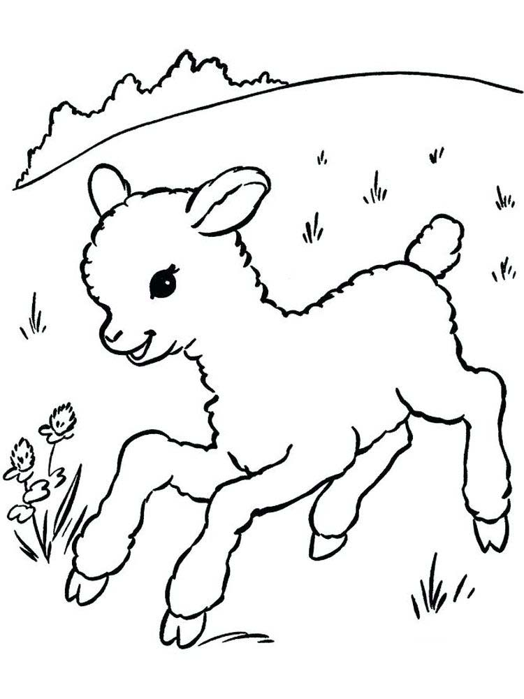 Download Free Sheep Coloring Pages For Toddlers