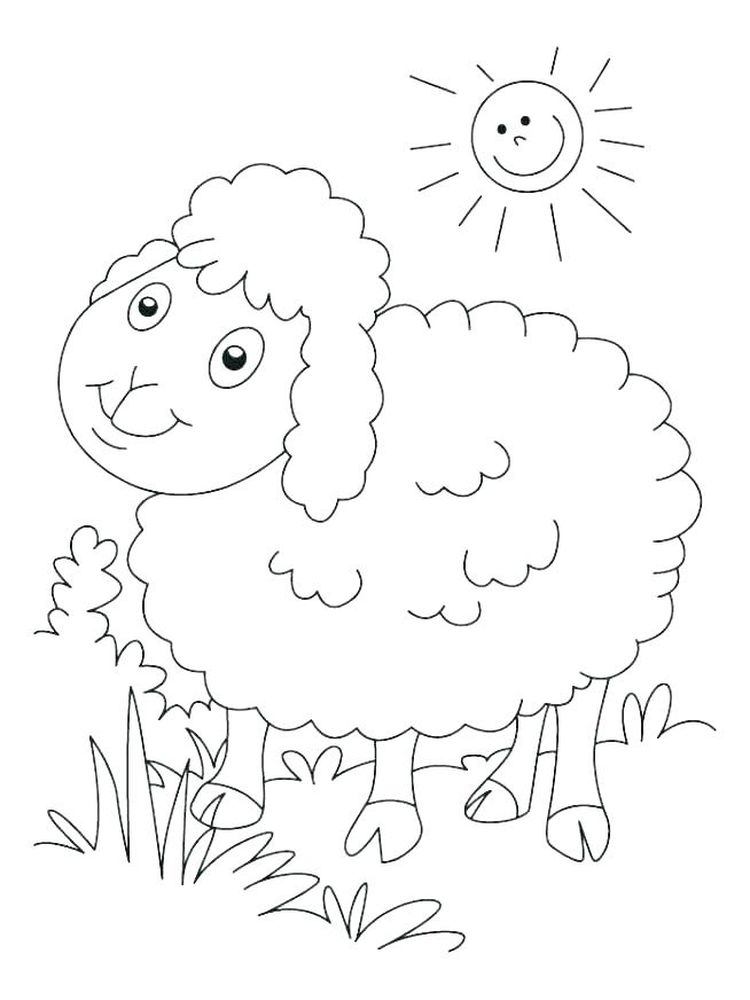 Free Sheep Coloring Pages Free Printable