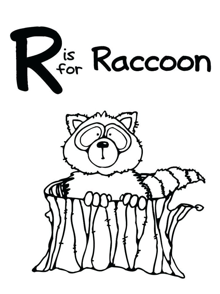 Printable Baby Raccoon Coloring Page Free
