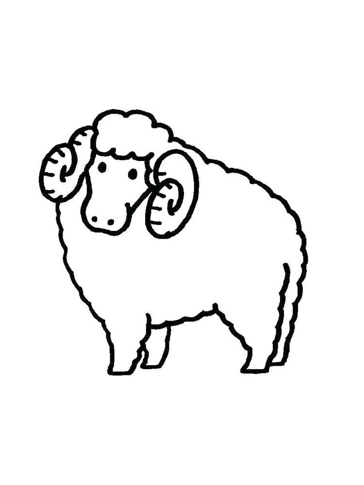 Printable Bighorn Sheep Coloring Pages