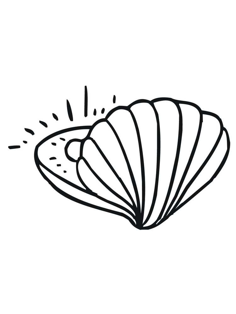 Printable Coloring Page Of A Shell