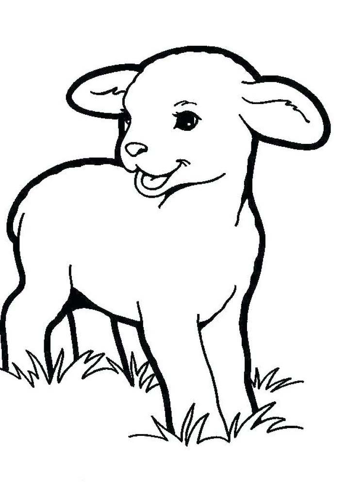 Printable Coloring Pages Boy With Sheep