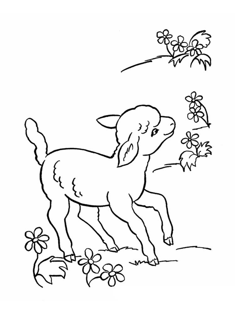 Printable Coloring Pages For The Lost Sheep Parable