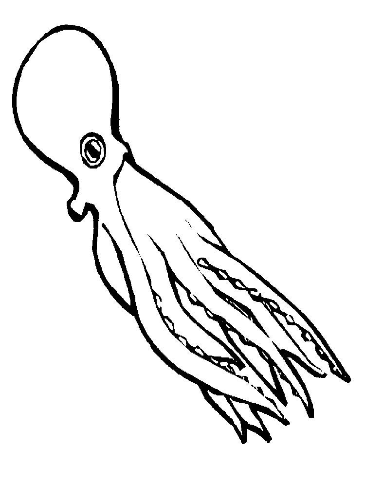 Printable Coloring Pages Of An Octopus