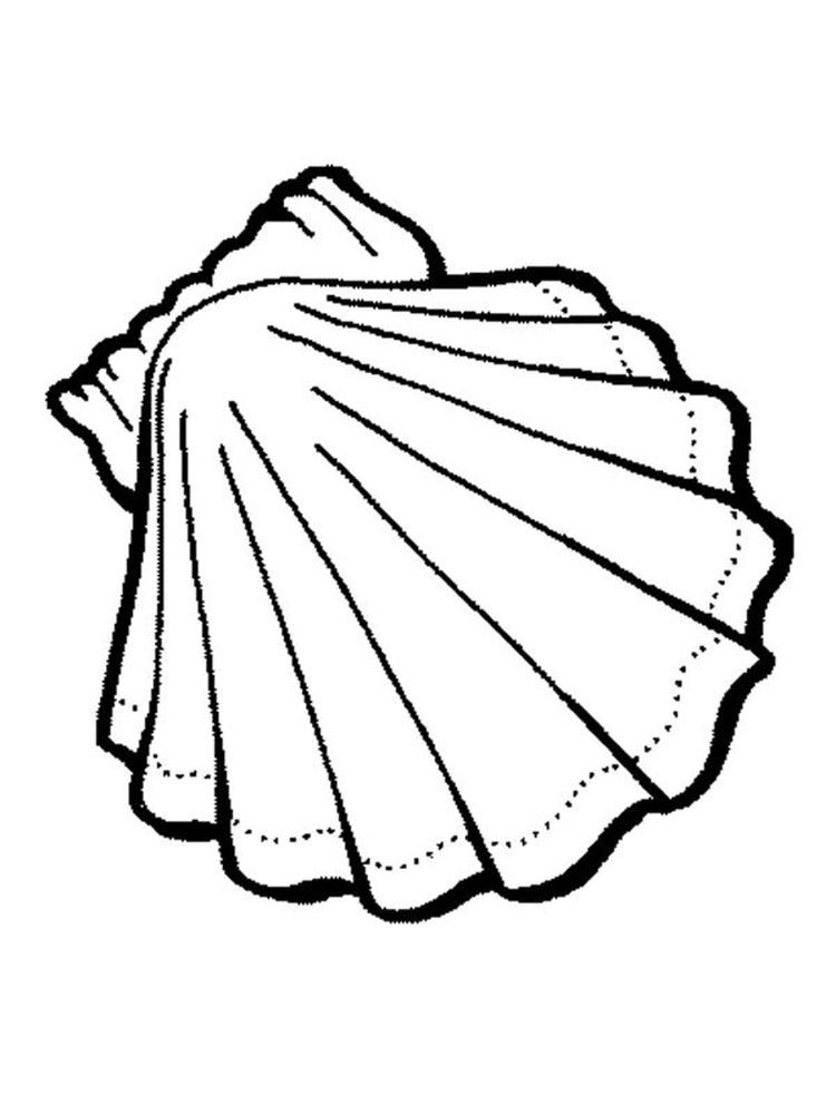 Printable Conch Shell Coloring Page