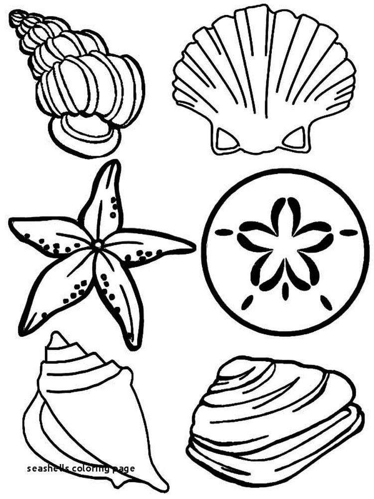 Printable Hermit Crab Shell Coloring Page