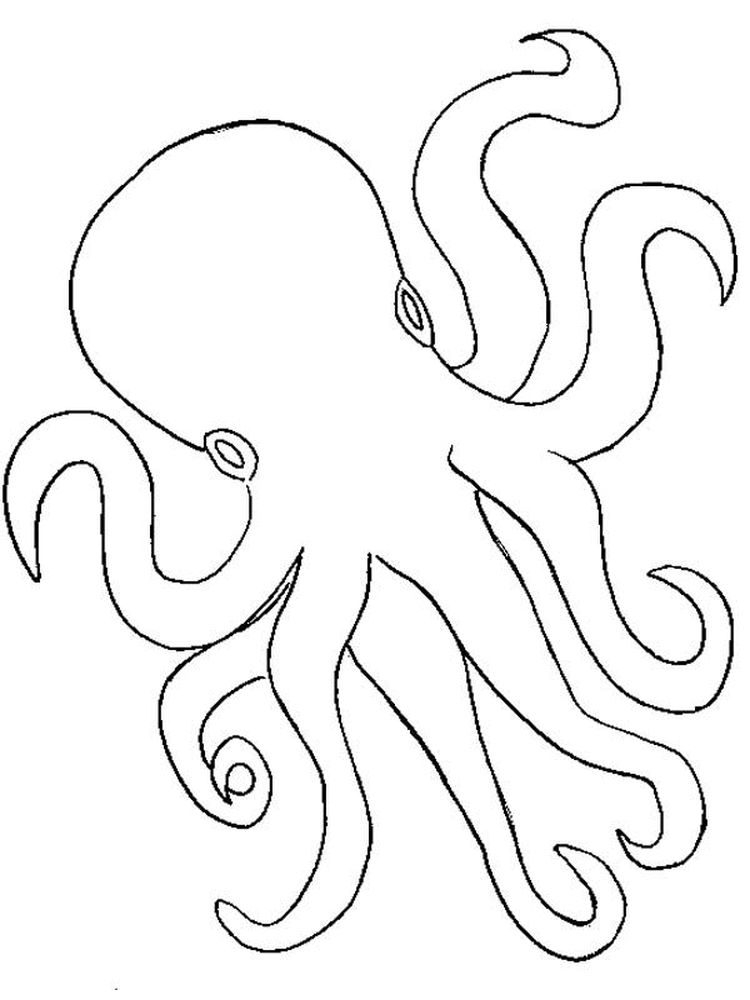 Printable Octopus Coloring Pages Free