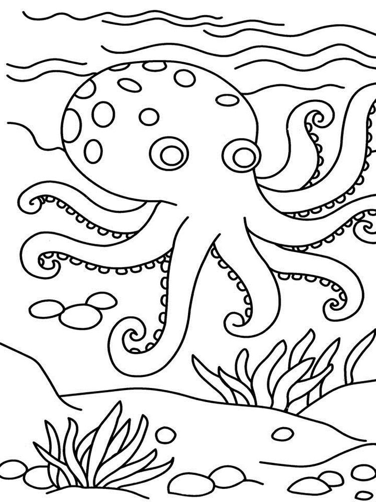 Printable Octopus Coloring Pages Printable