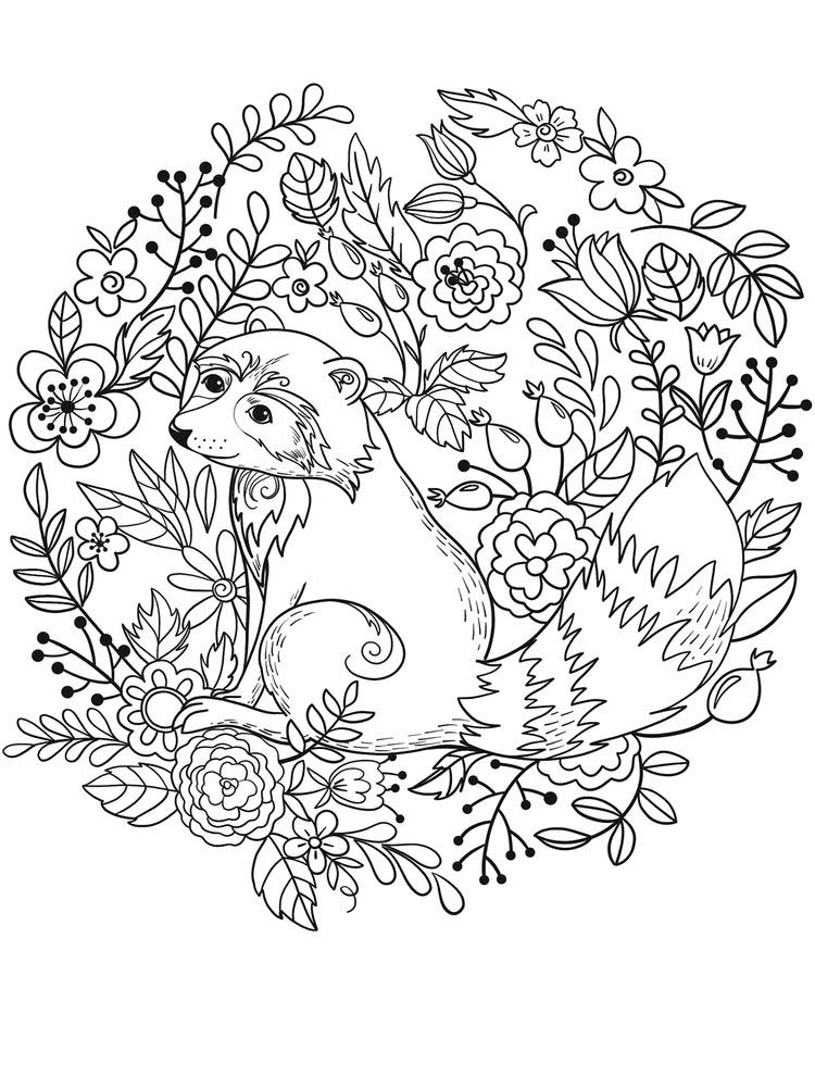 Printable Raccoon Mask Coloring Page