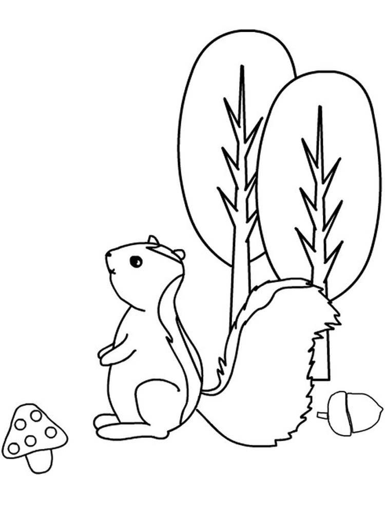 Printable Realistic Skunk Coloring Pages