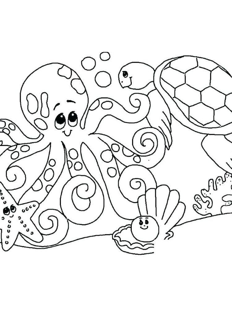 Printable Sea Shell Coloring Pages