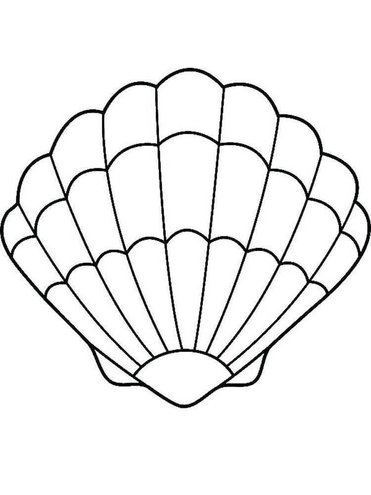 Printable Shell Coloring Pages For Adults