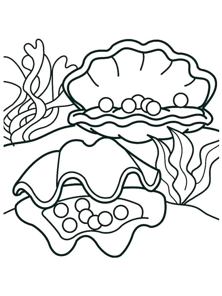 Printable Shell Coloring Pages