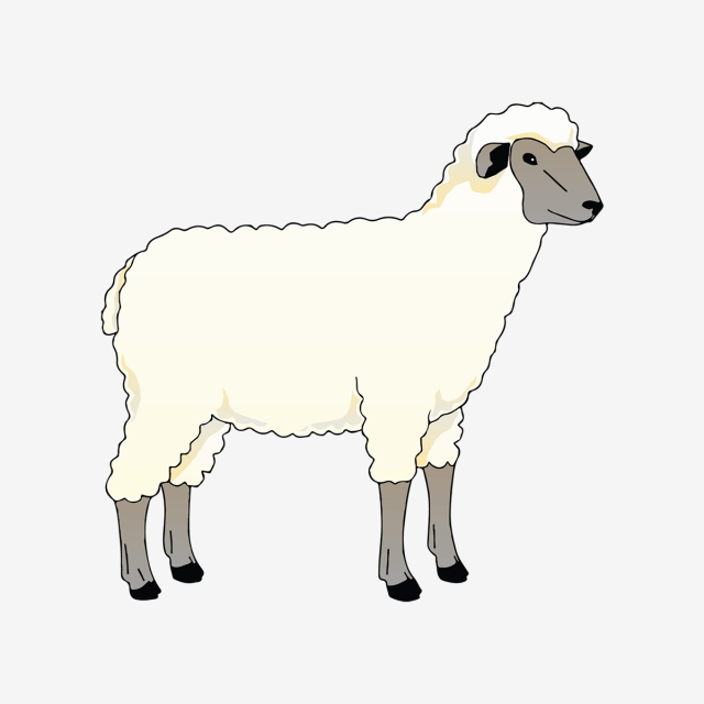 Printable Small Sheep Coloring Pages