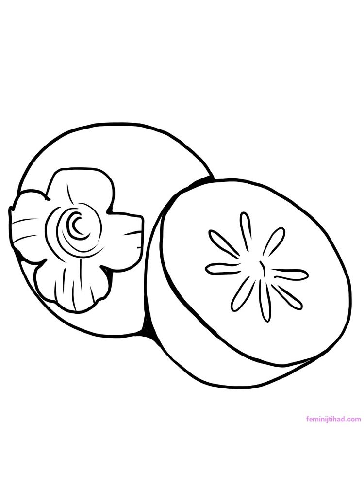 Printable persimmon coloring pages pdf