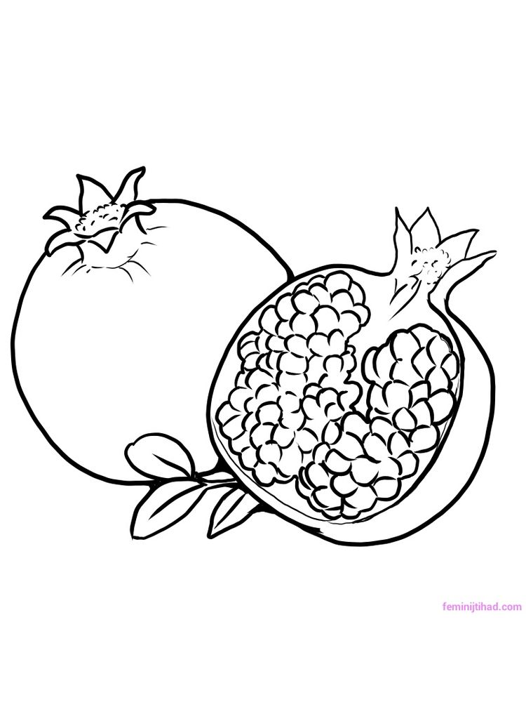 Printable pomegranate coloring image