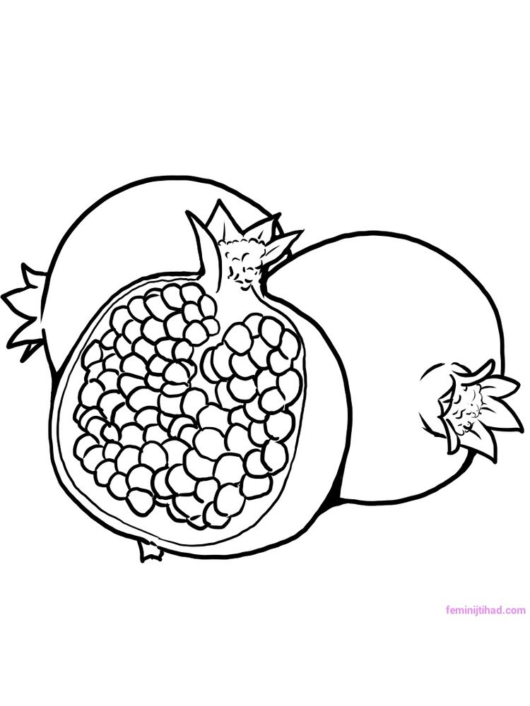 Printable pomegranate coloring pictures