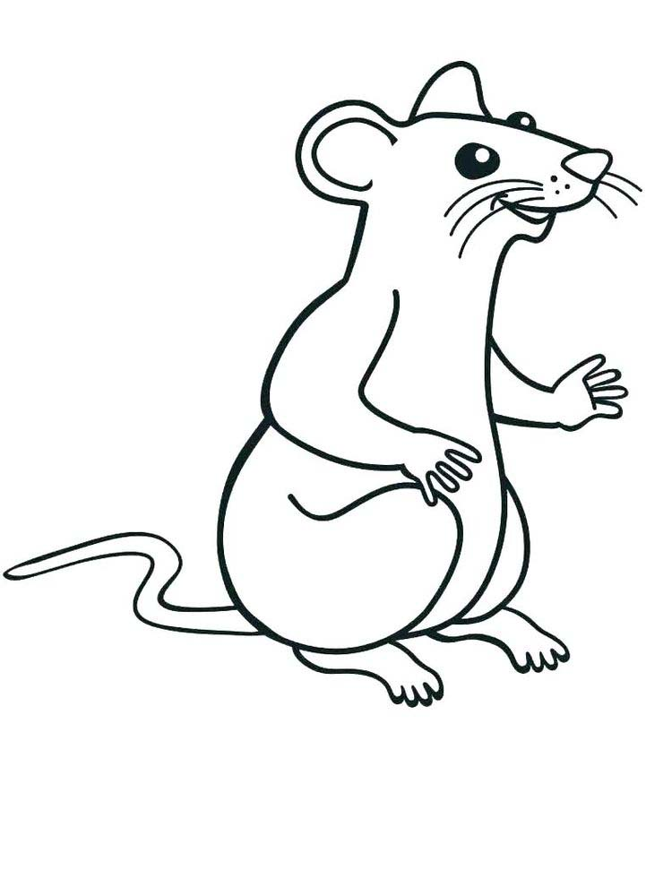 Printable rat coloring pages free