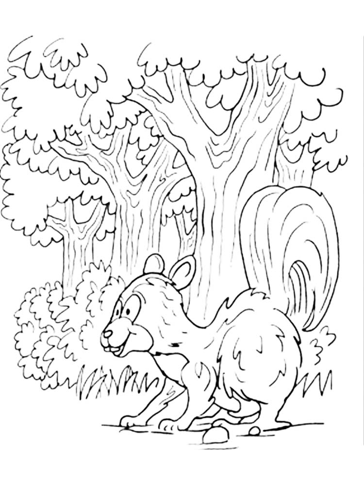 Printable skunk coloring pages image