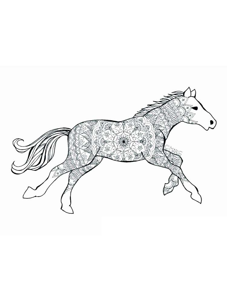 Printable wild horse coloring page