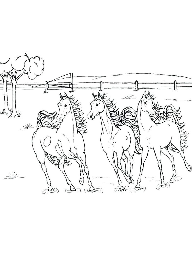 Printable wild horse coloring pages image download