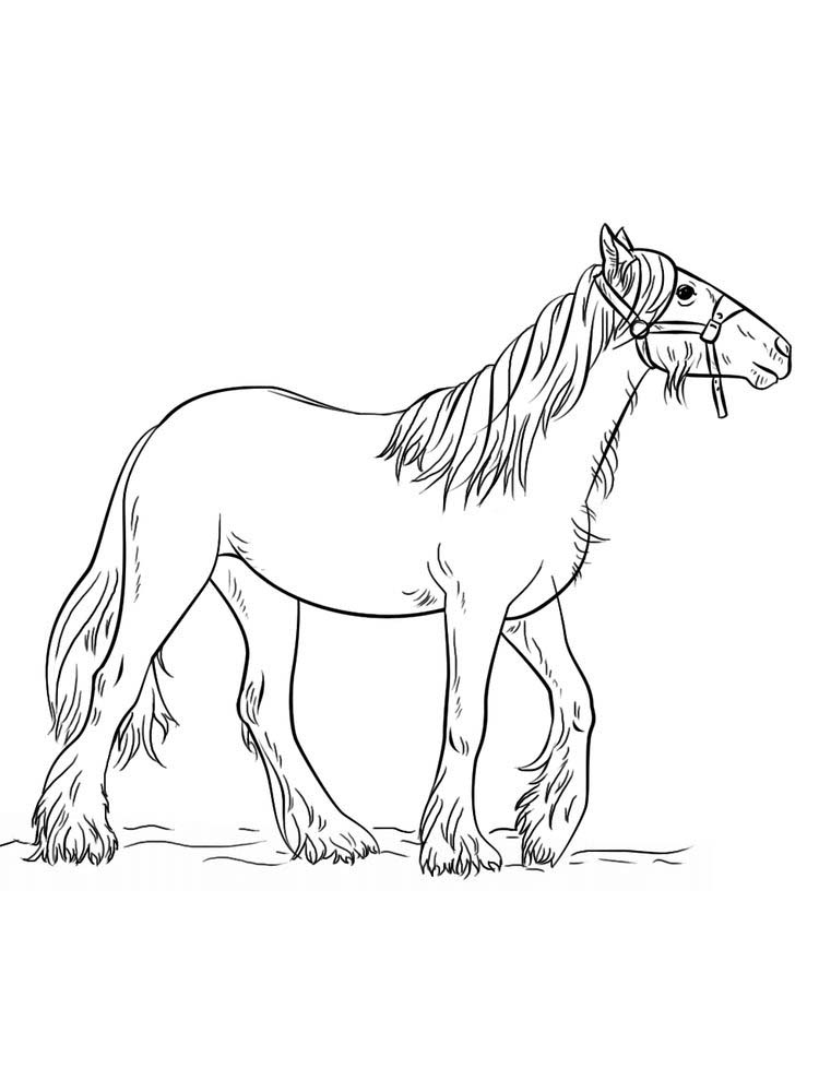 Printable wild horse coloring pages pict