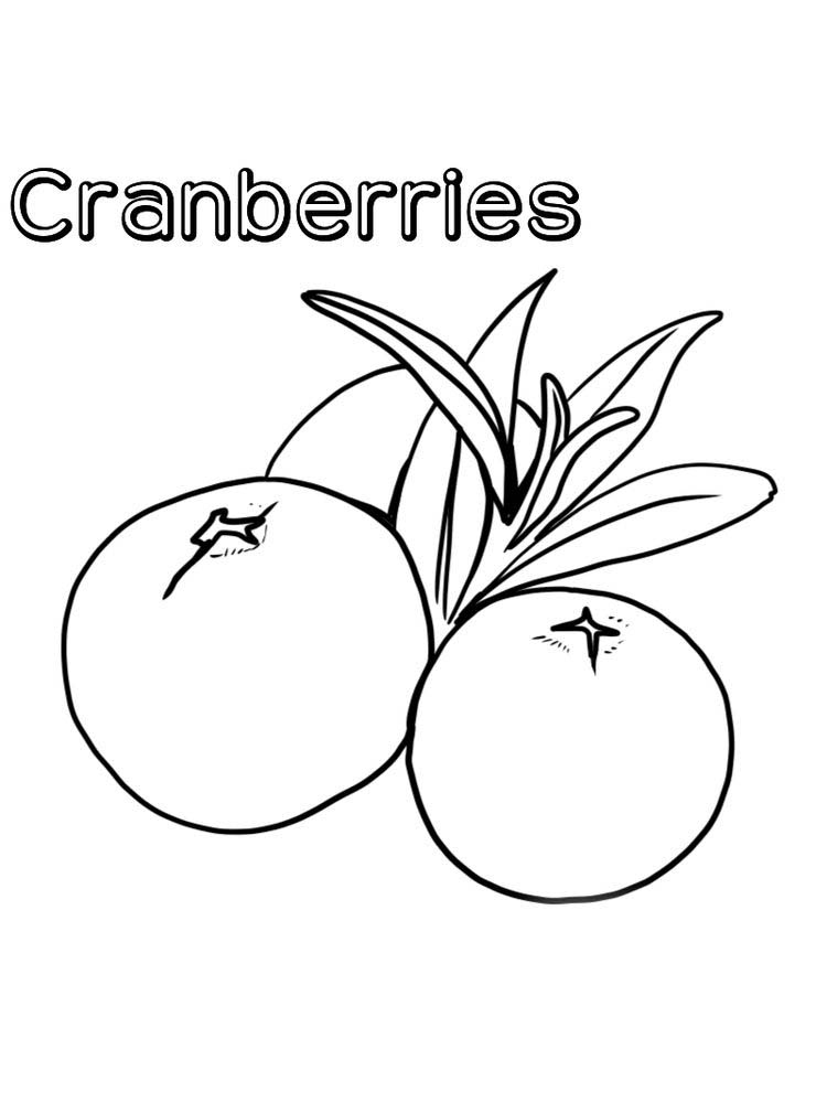 download cranberries coloring page print