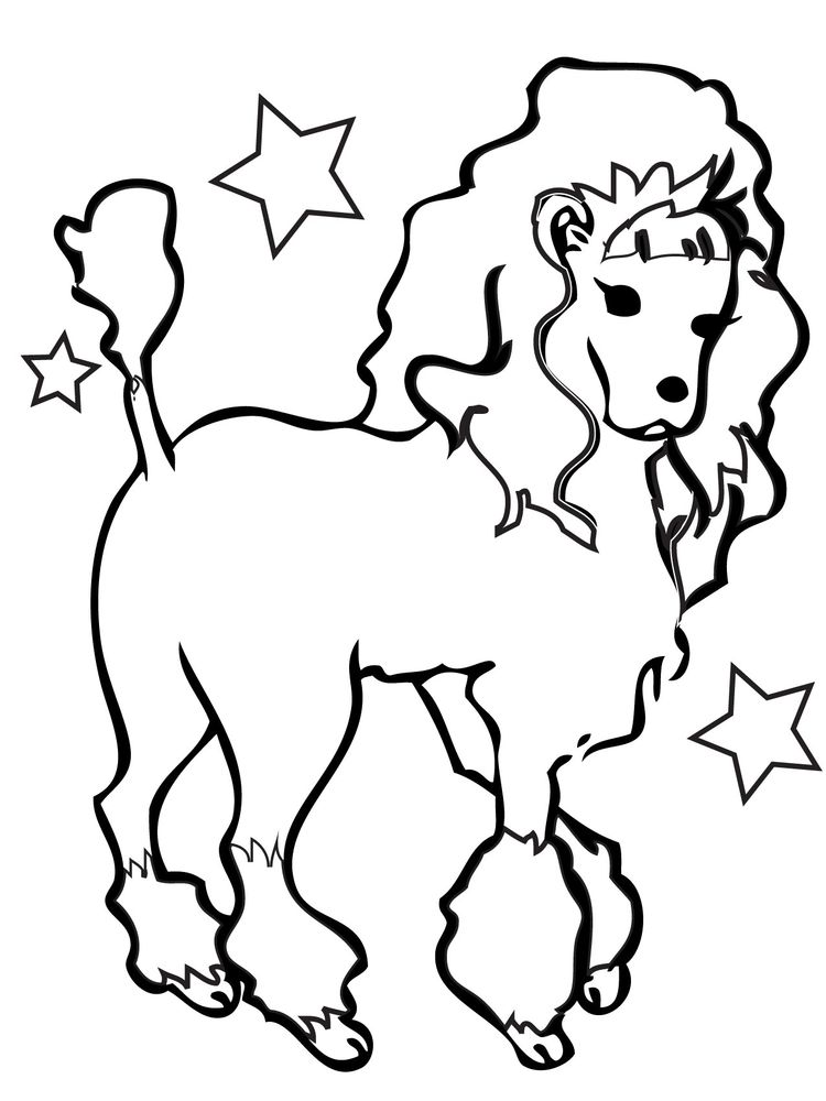 download poodle coloring pages picture