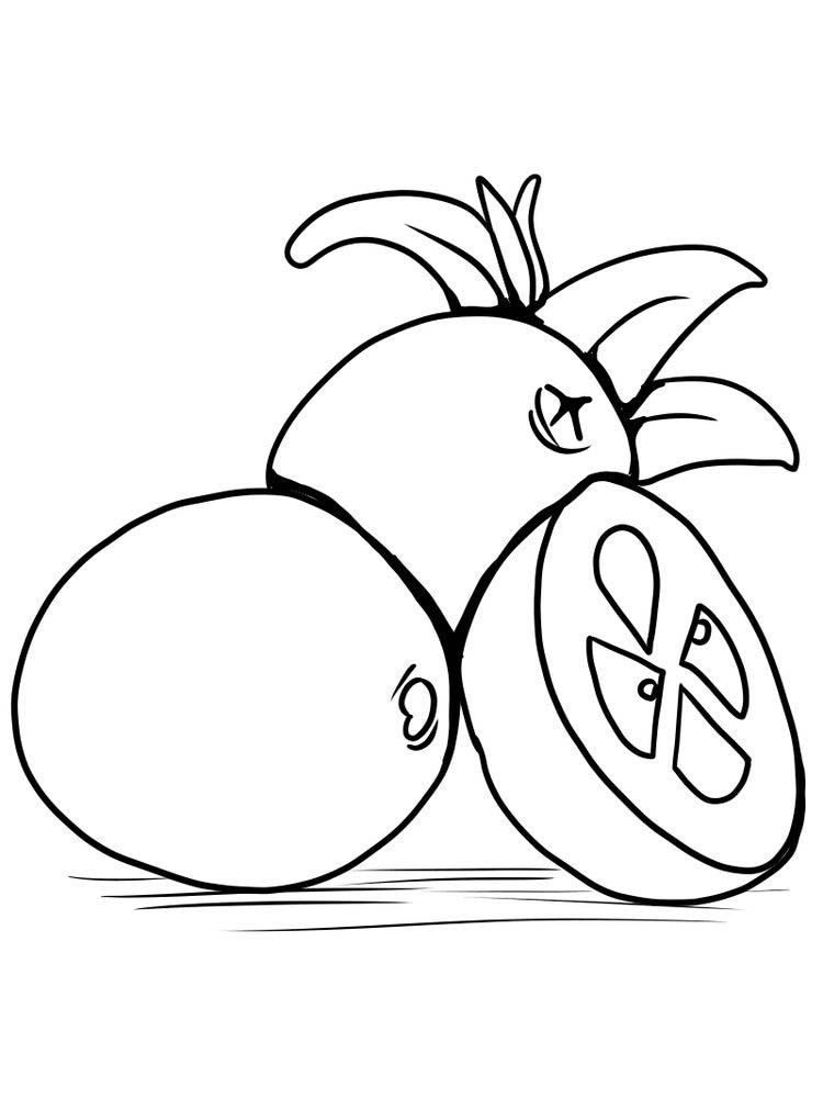 free cranberries coloring pages print