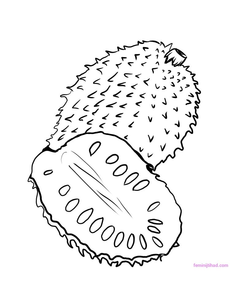 free soursop coloring pages printable