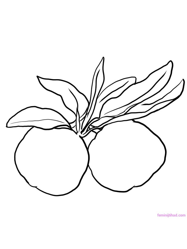 printable New Yuzu Coloring Pages