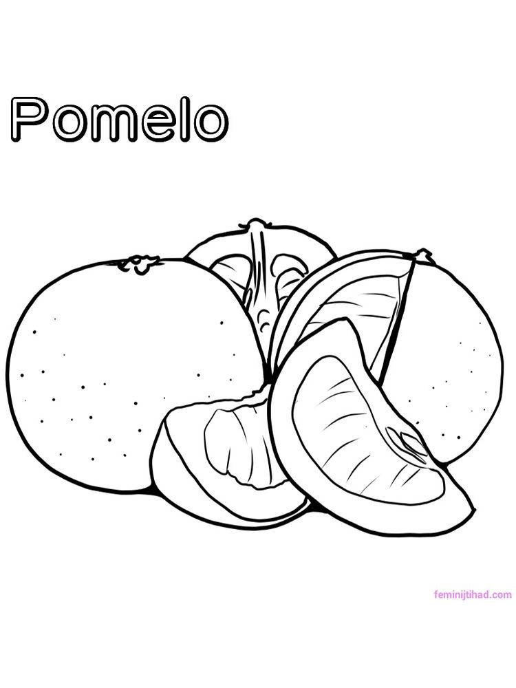 printable pomelo coloring page