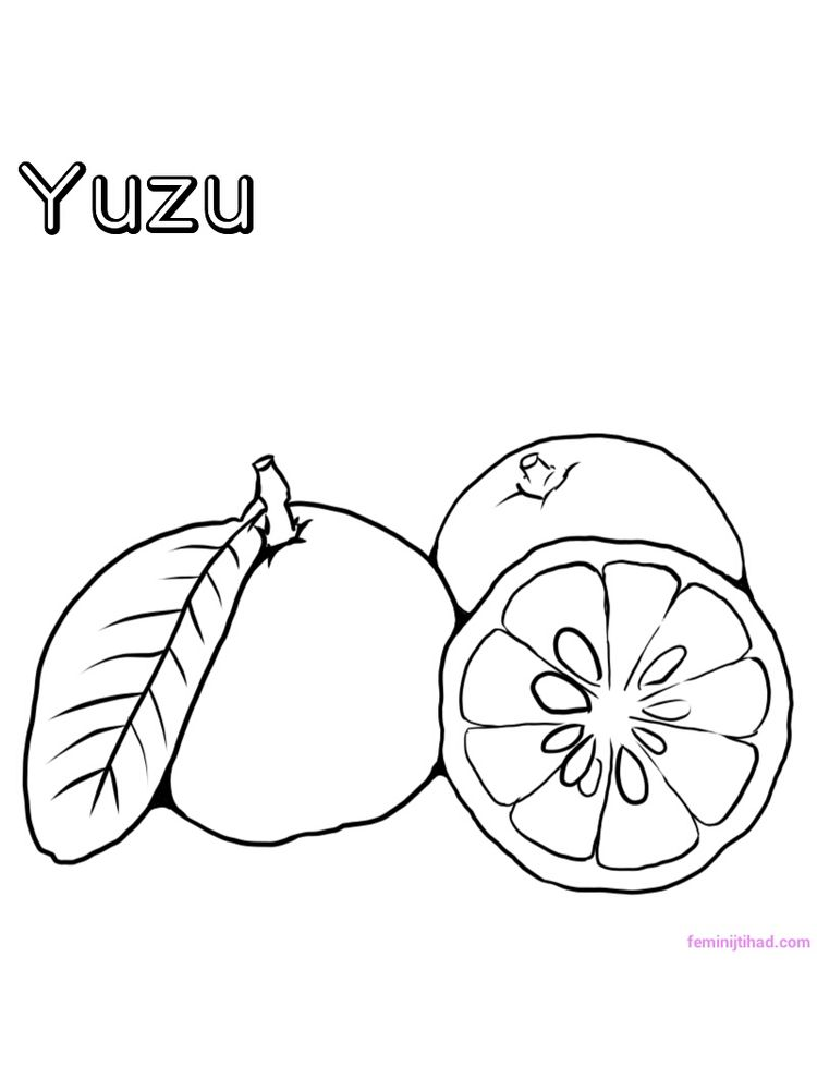 printable yuzu coloring