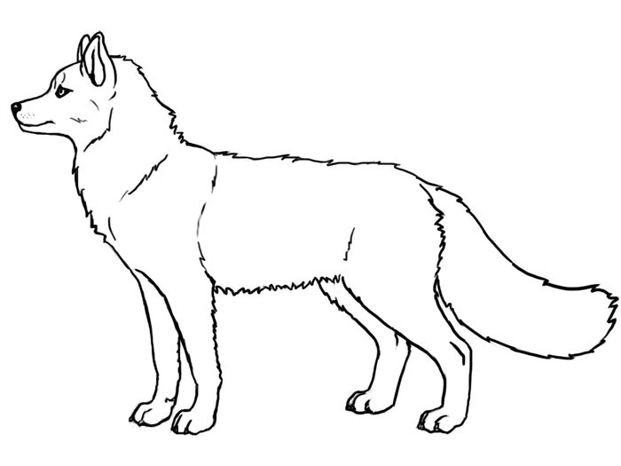 Free Husky Dog Coloring Pages To Print