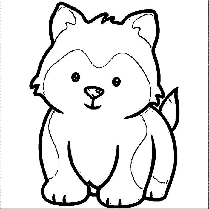 Printable Baby Siberian Husky Coloring Pages