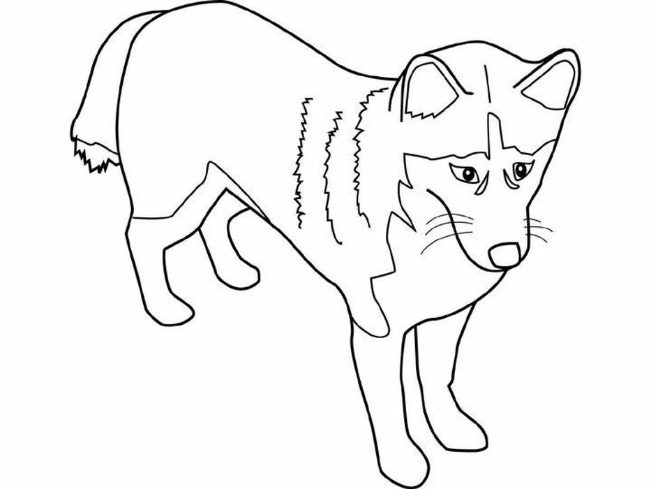 Printable Coloring Pages For Husky Puppies