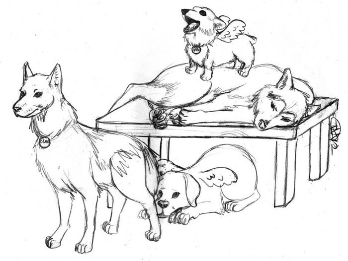 Printable Hard Wolfs And Husky Coloring Pages Free